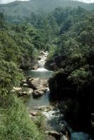 Rio Preto through Mauá valley