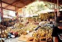 Bananas at the Central Market